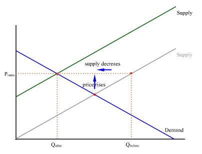 Living Economics Supply And Demand Transcript
