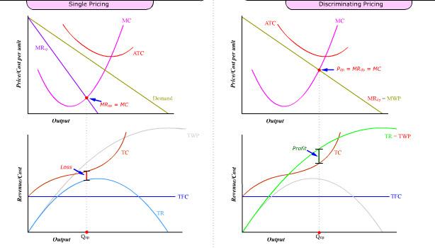Living Economics: Profit vs Efficiency Maximization